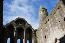 Pic 2016-0612 06 Rock of Cashel (18)