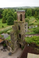 Pic 2016-0613 01 Blarney Castle (38)