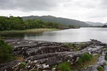 Pic 2016-0614 09 Killarney National Park (11)
