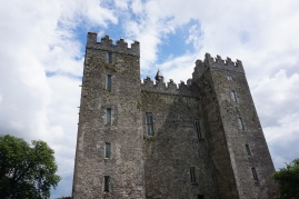 Pic 2016-0615 07 Bunratty Castle (40)