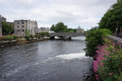 Pic 2016-0616 01 Galway (17)