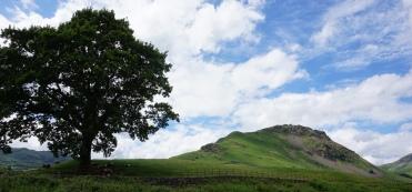 Pic 2016-0621 04 Lake District North (21) edit