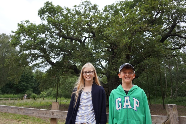 Pic 2016-0625 01 Sherwood Forest (10)