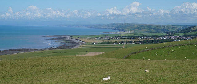 Pic 2016-0703 02 Southern Wales (40)