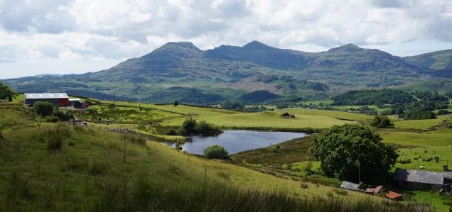 Pic 2016-0703 03 Wales Snodia NP (65)