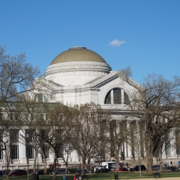 museums (1)