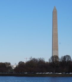 washington (2)