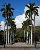 Pic 2017-0624 04 Honolulu (23) blog edit