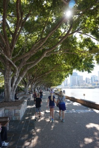 Pic 2017-0705 Brisbane 08 South Bank (5)