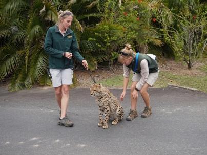 Pic 2017-0709 Australia Zoo (151) edit