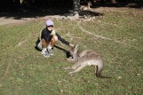Pic 2017-0709 Australia Zoo (89)