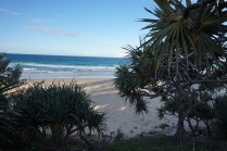 Pic 2017-0715 Coolum Beach QLD (1)