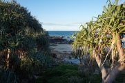 Pic 2017-0715 Coolum Beach QLD (39)