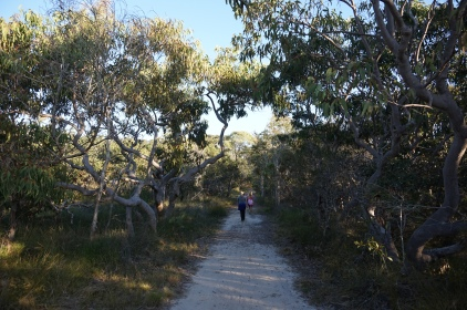 Pic 2017-0728 Emu Mountain (29)