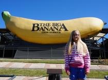Pic 2017-0807 01 Big Banana (1) edit