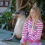 Pic 2017-0808 01 Dolphin Marine Magic (71) edit