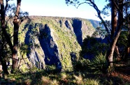 Pic 2017-0809 11 Oxley Wild Rivers NP (6) edit