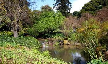 Pic 2017-0904 06 Botanical Gardens (50) Edit