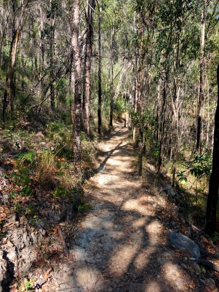 Pic 2017-0924 07 Mt Tibrogargan Trail (17) Edit