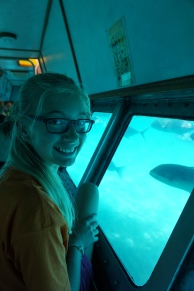 Pic 2017-1003 02 GBR Green Island Submarine (112) Edit