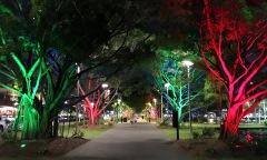Pic 2017-1005 10 Cairns Walk (35) Edit