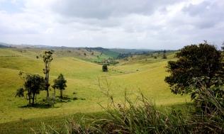 Pic 2017-1006 09 Atherton Tablelands (6) Edit