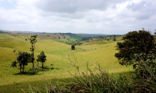 Pic 2017-1006 09 Atherton Tablelands (6) Edit