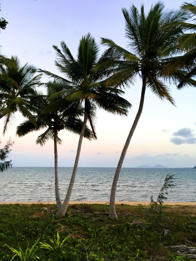 Pic 2017-1007 06 Kurrimine Beach (2) Edit