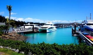 Pic 2017-1011 02 Hamilton Island (66) Edit