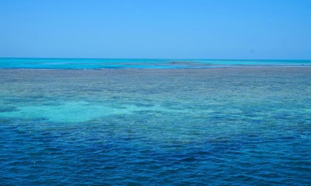 Pic 2017-1012 02 GBR Hardy Reef (13) Edit