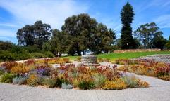 Pic 2017-1108 07 Perth Kings Park (20) Edit