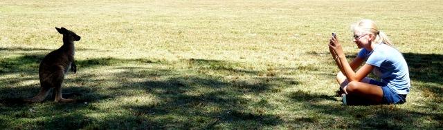 Pic 2017-1214 06 Morisset Park (42) Edit