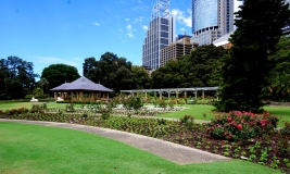 Pic 2017-1230 01 Botanical Gardens (4) Edit