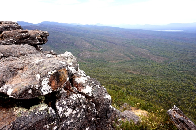 Pic 2018-0120 05 Grampians Reed Lookout (10) Edit