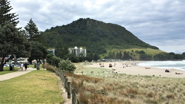 Pic 2018-0208 04 Mt Maunganui Beach (8) Edit