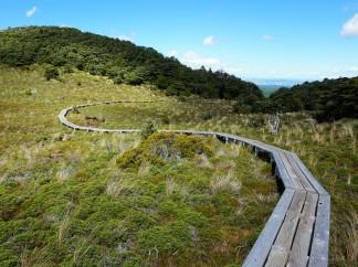 Pic 2018-0212 04 Waitonga Falls Hike (60) Edit