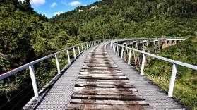 Pic 2018-0212 08 Hapuawhenua Viaduct Hike (40) Edit