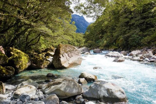 Pic 2018-0223 08 River at Marian Falls (20) Edit