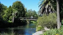 Pic 2018-0303 04 Botanical Gardens (36) Edit