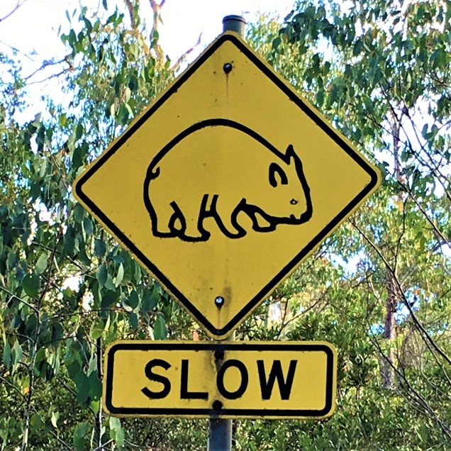 Wombat Sign