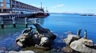 Pic 2018-0331 04 Hobart Wharf Area (22) Edit