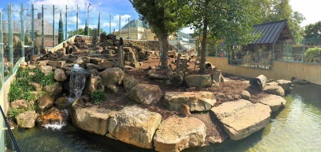 Pic 2018-0407 01 Launceston City Park (8) Edit