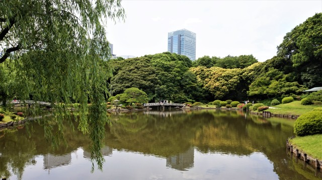 Pic 2018-0605 06 Shinjuku Gyoen National Garden (41) Edit
