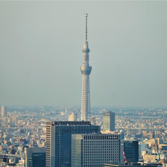 Pic 2018-0607 14 Tokyo Tower (45) Edit