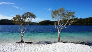 Pic 2018-0722 03 Fraser Island Lake McKenzie (5) edit