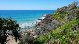 Pic 2018-0726 01 Coolum Beach Walk (12) edit