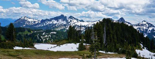 Pic 2019-0629 13 Mt Rainier Paradise Trail (75) e2