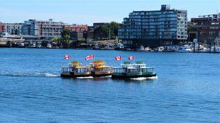 Pic 2019-0701 01 Victoria on Canada Day (4) e2